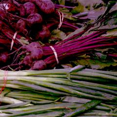Kulinarisk Sydfyn – Et samsurium af kvalitetsleverandører